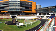 639851-royal-randwick-theatre-of-horse